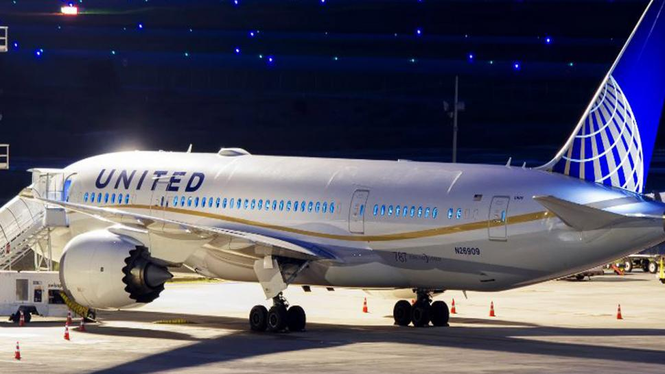 United faces criminal probe into dog's death in overhead cabin