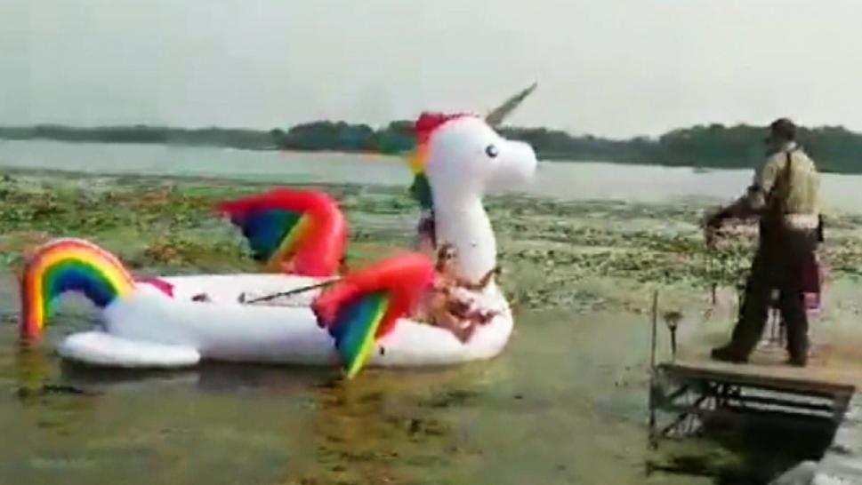 Unicorn Rescue