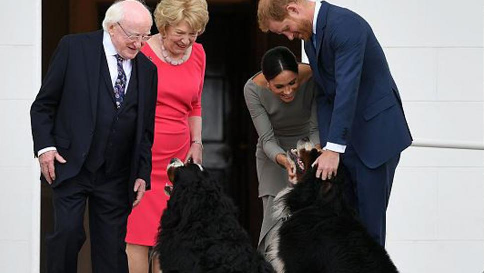 The royal family has a new dog.