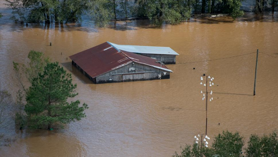 SC 'detainees' drown as sheriff's department van is swept into floodwaters