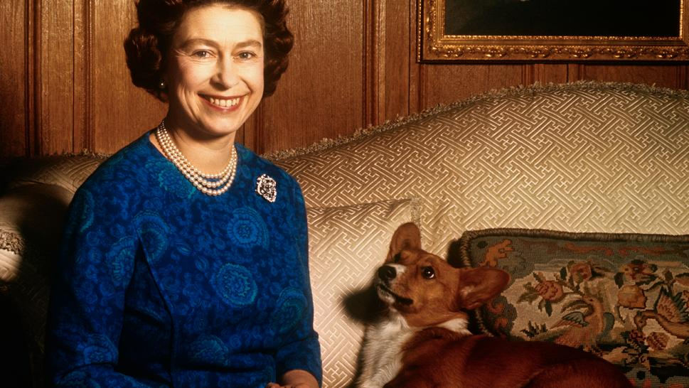 Queen Elizabeth and a corgi in 1970