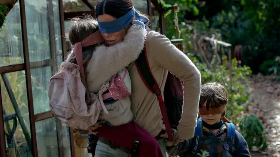 "Netflix issued fans a warning against doing what's called the ""Bird Box"" challenge."
