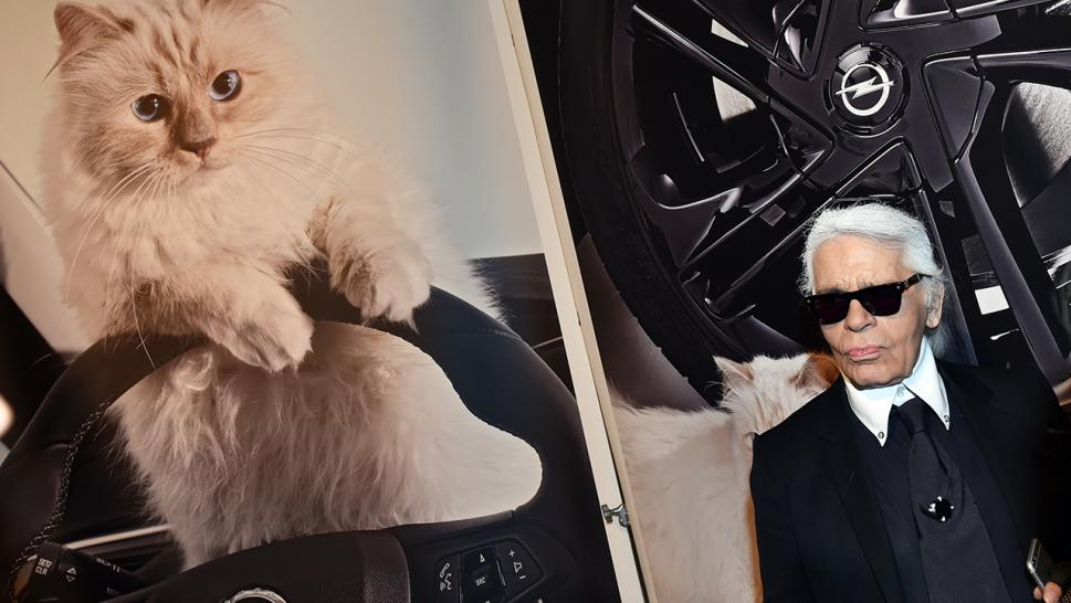 Karl Lagerfeld died Feb. 19, leaving behind his social-media famous cat, Choupette.