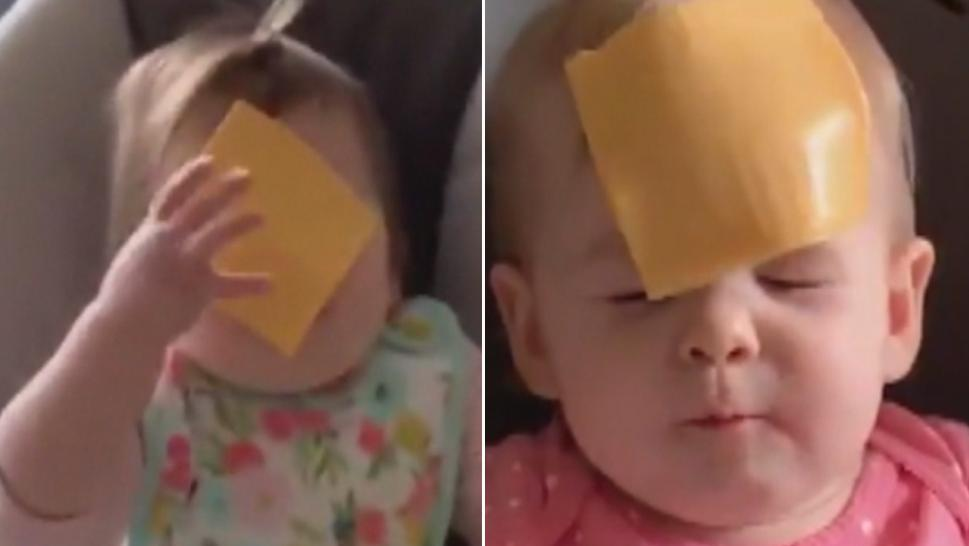 "Parents are hurling slices of cheese at their children as part of the ""Cheesed Challenge."""