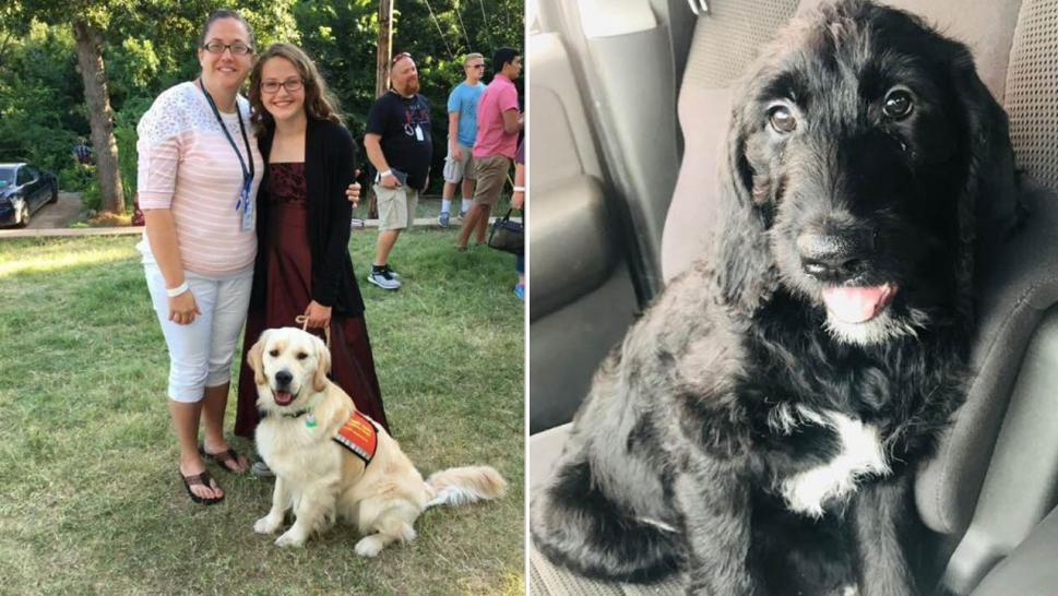 Hannah Westmoreland was given a new service dog after hers was fatally shot at her home.