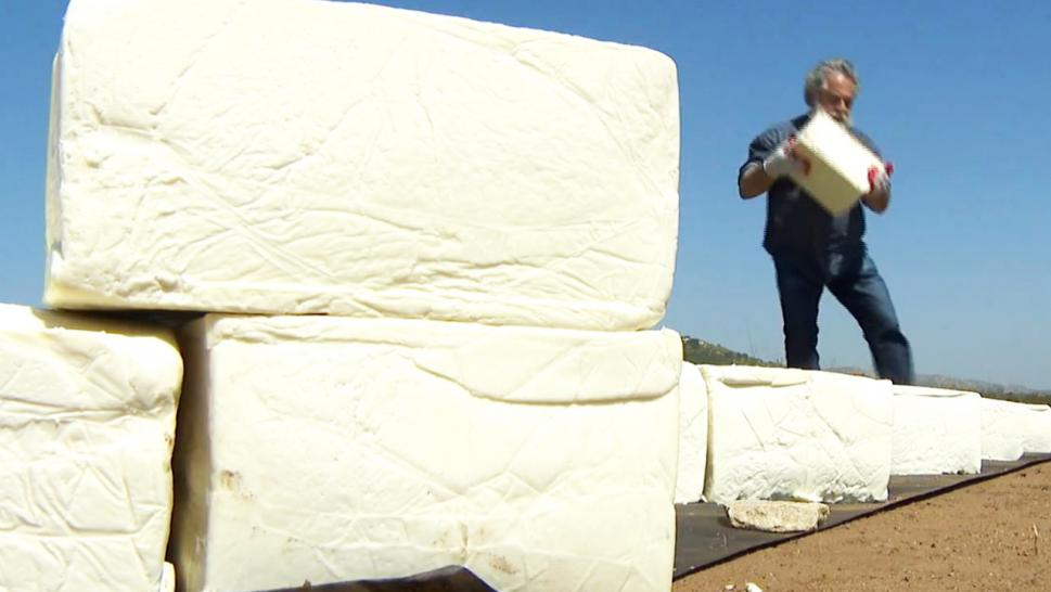 Cosimo Cavallaro lays a brick of cotija cheese on his wall.