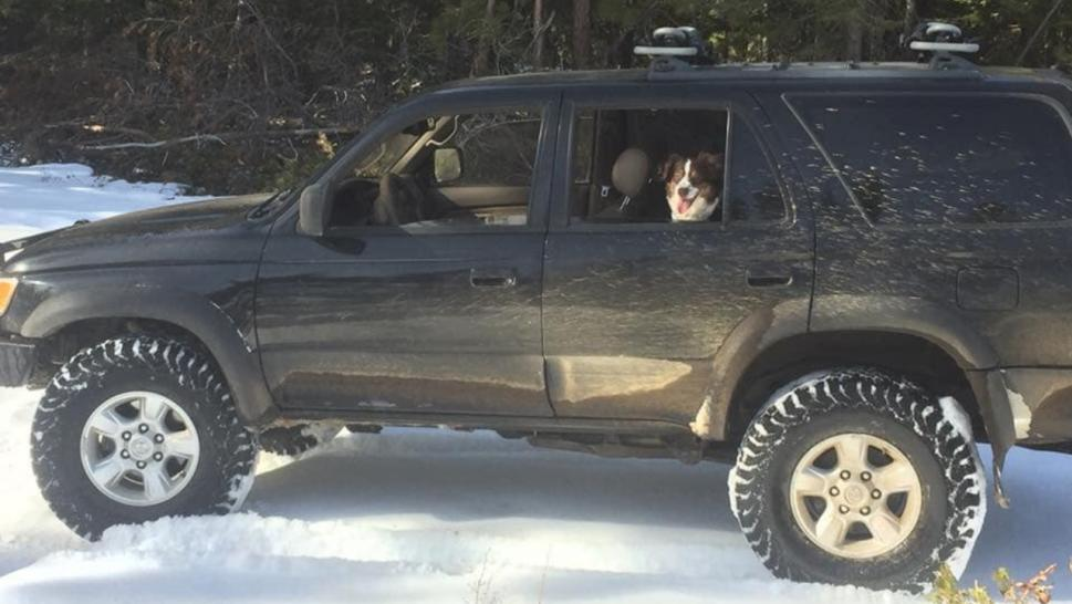 Jeremy Taylor and his dog were trapped in the snow in Oregon.