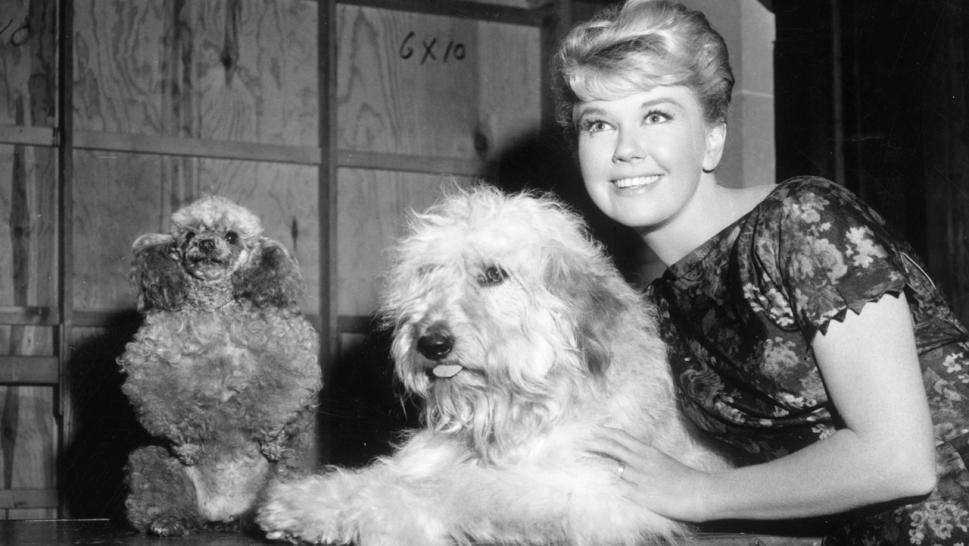 For nearly 35 years, she also co-owned one of its local landmarks, The Cypress Inn, which is a 44-room boutique hotel. The hotel is considered one of the most pet-friendly in America.