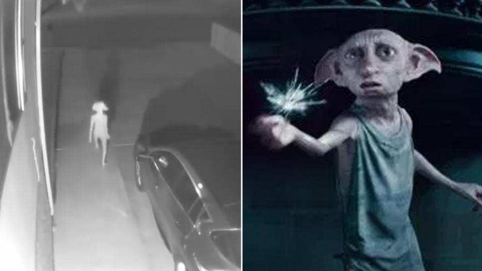 Did a family catch Dobby the house elf on home security footage?