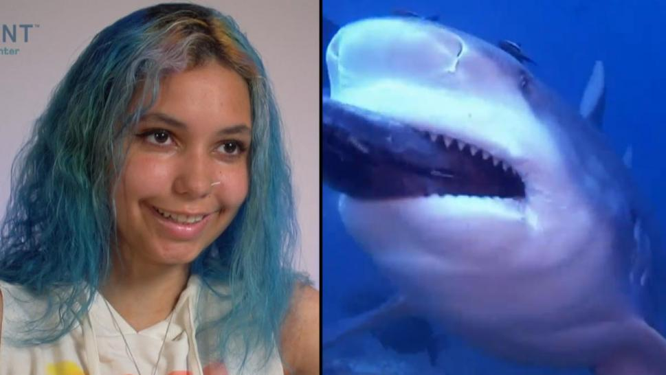 Teen attacked by a shark