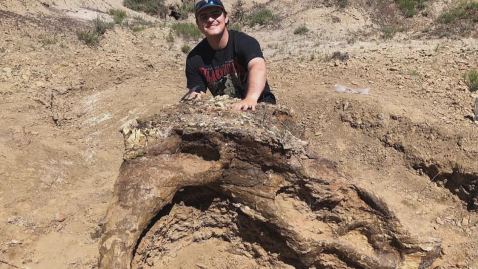 This college student discovered a fossil of a Triceratops skull in North Carolina.