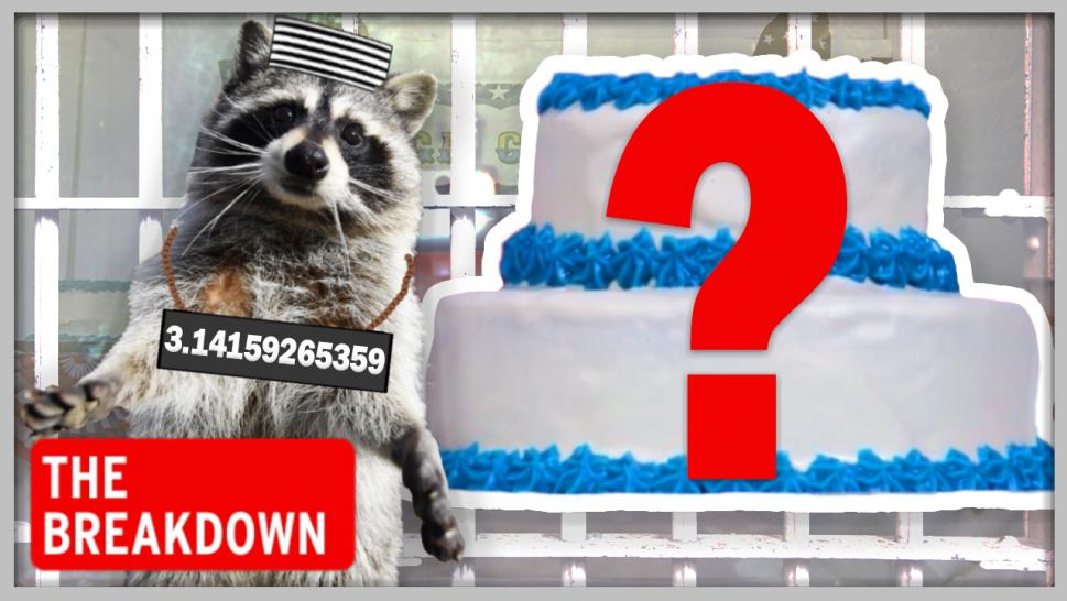 Did Raccoons Eat the Cakes at Ohio County Fair?