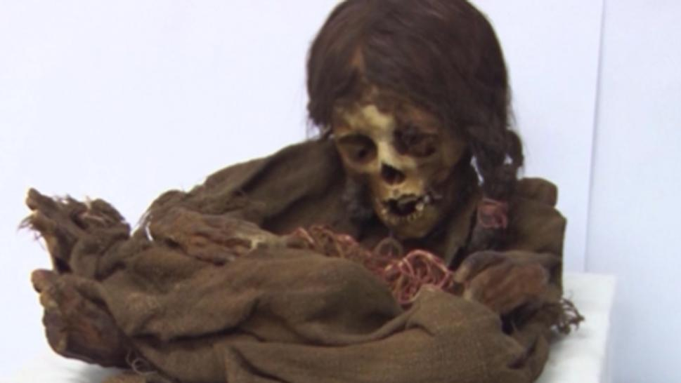 The mummy is 500 years old.