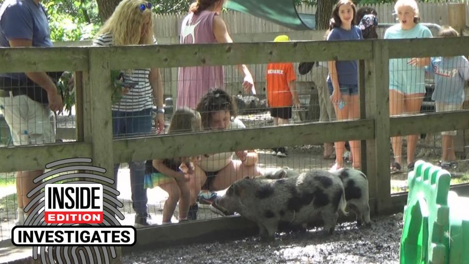Petting zoos can be great fun for the whole family, giving children a chance to get up close with animals they might not see every day. But could there be a hidden danger that can make little ones sick?