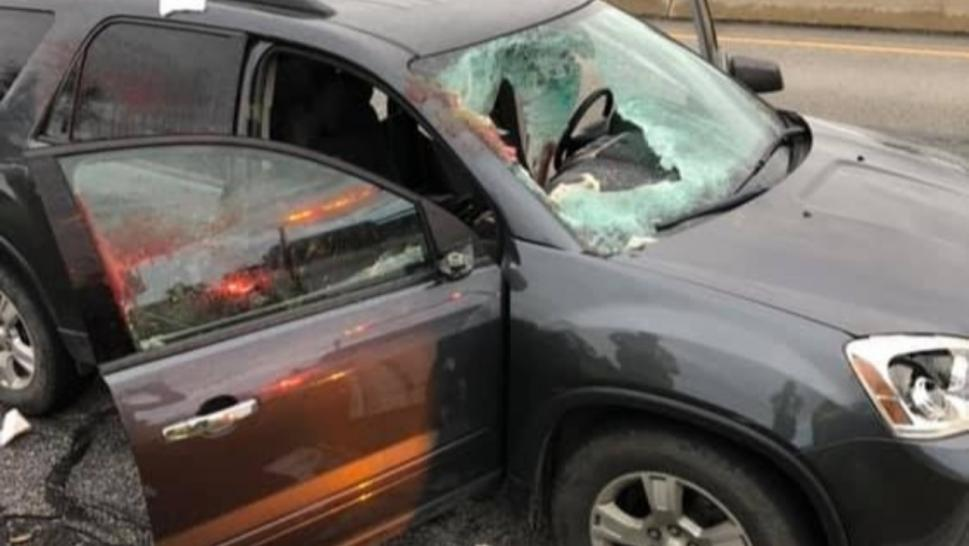 A deer flew through the windshield of this woman's car.