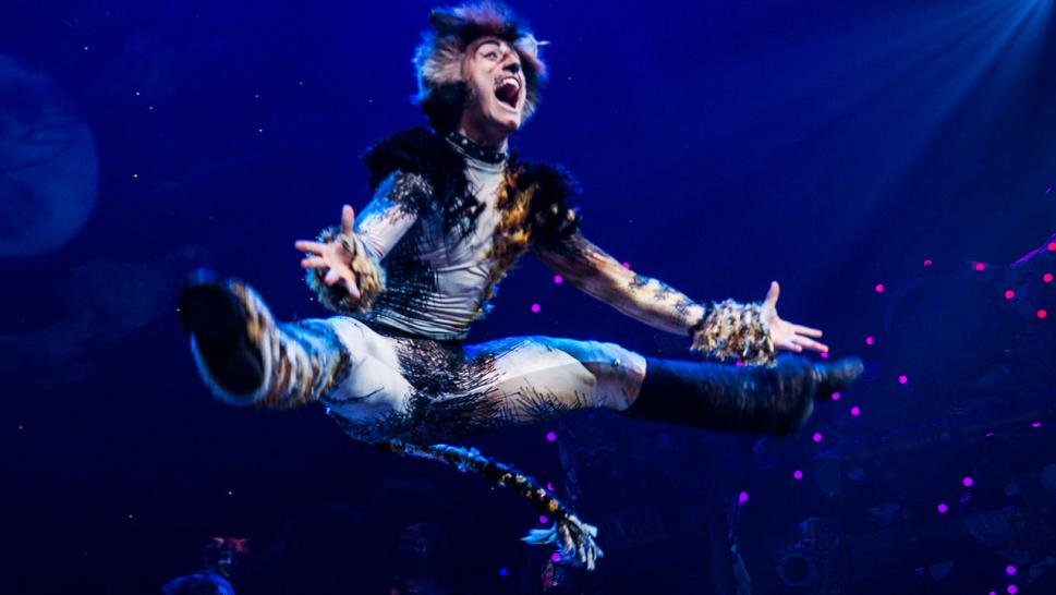 """Cats"" on Broadway in 2016."