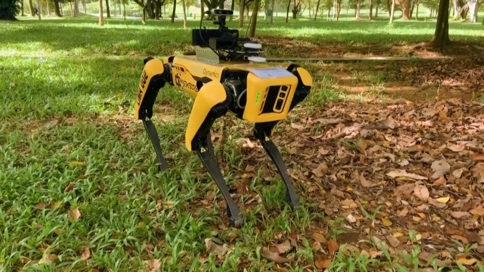 Spot, the four-legged robot