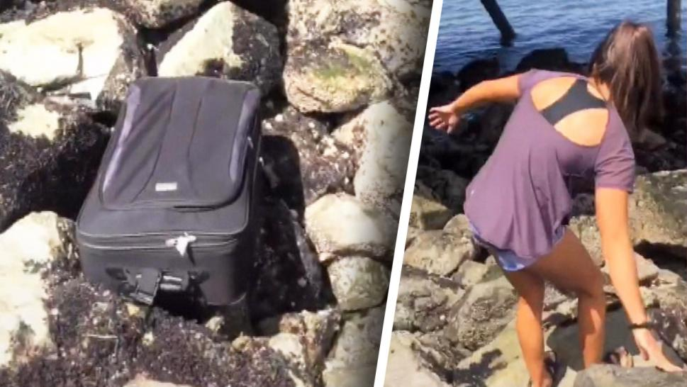 Suitcase found with dead body