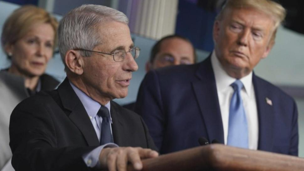 Dr. Fauci and President Trump