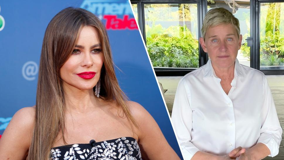 Sofia Vergara Defends Joke in 2015 Ellen Interview