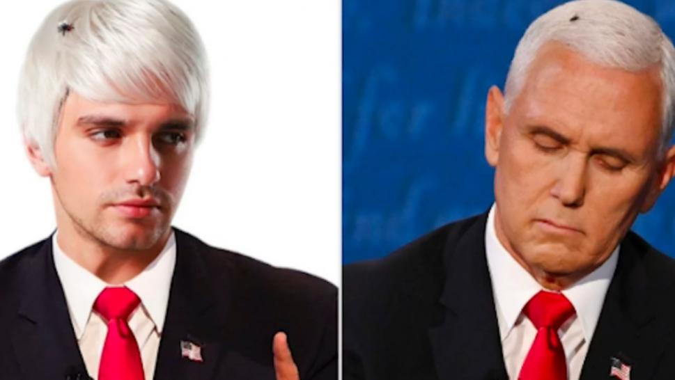 Mike Pence Wig