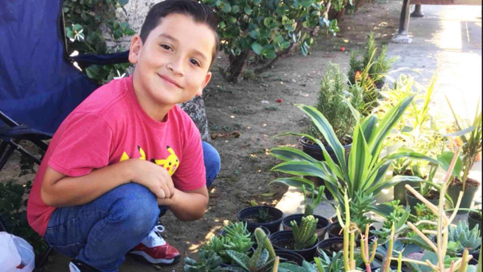The 8-year-old's small business Aaron's Garden helped his family move into stable housing.