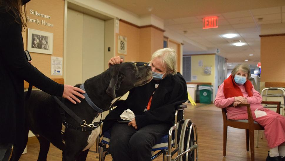 Resident Sheryl Gerdwagen pets Marley, the great dane, as resident Ethel Brown enjoys watching from afar