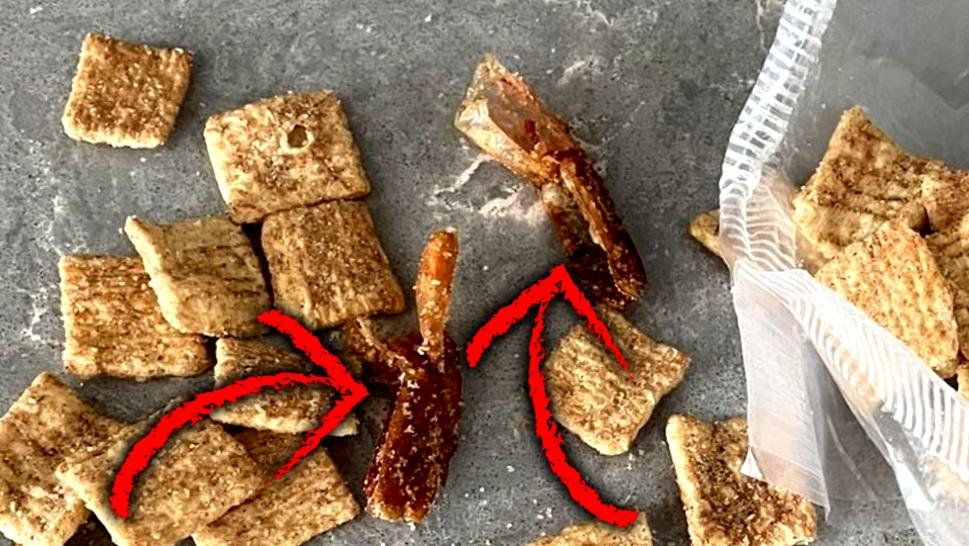 Possible shrimp tails in a bag of Cinnamon Toast Crunch