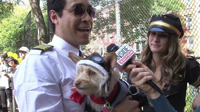 This puppy donned an airplane costume while his two owners dressed as the pilots.