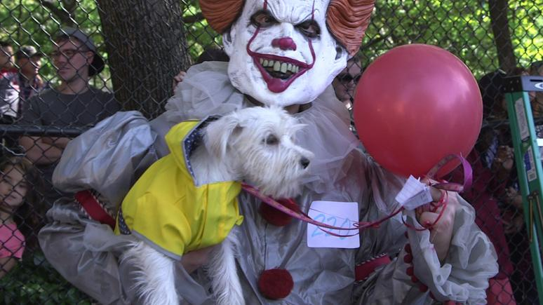 "A dog attended the parade as Georgie from ""IT."" Its owner dressed as Pennywise."