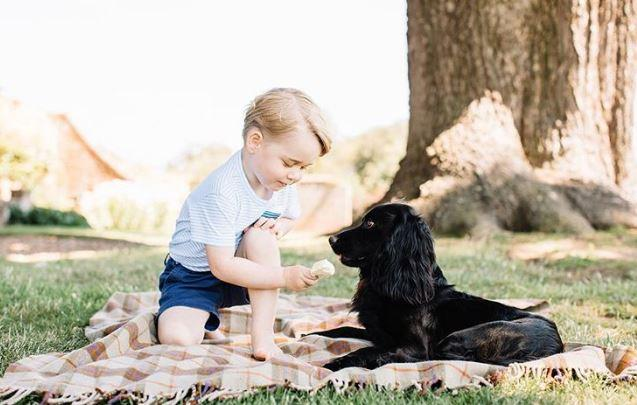 Prince George with his dog, Lupo.