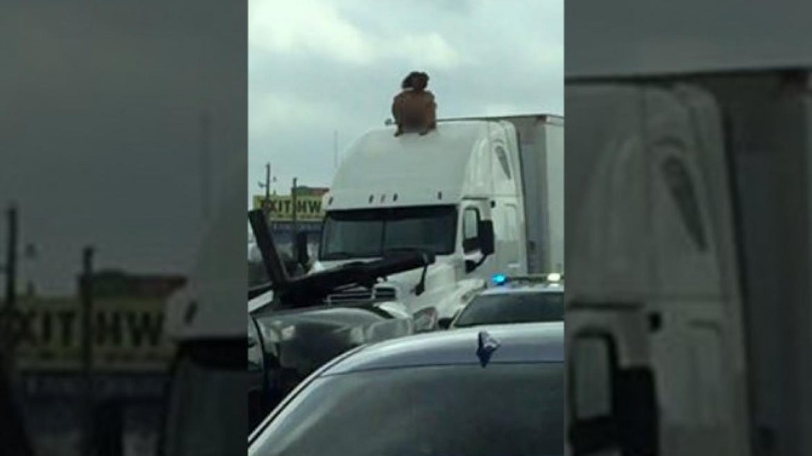 Naked, dancing woman on top of big rig shuts down Houston