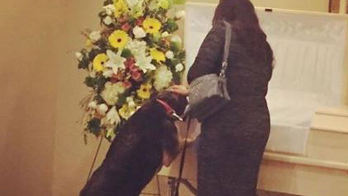 A dog achieved closure by attending her master's funeral.