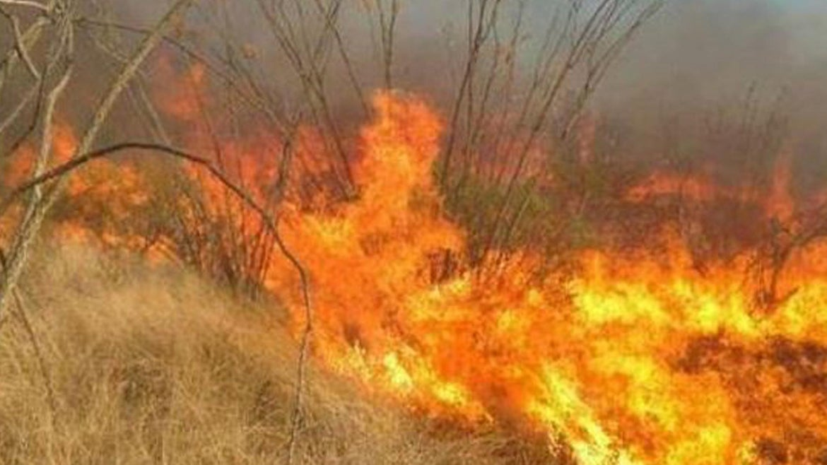 The wildfire cost about $8.2 million to battle.