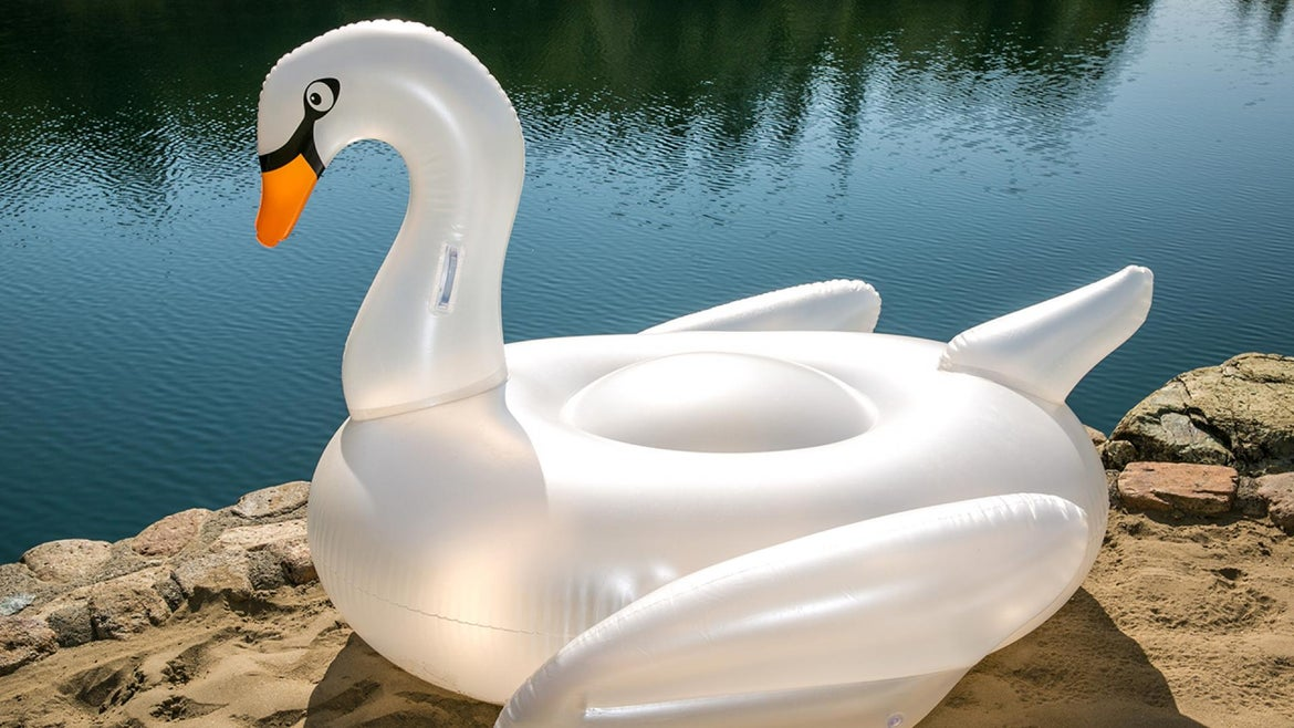 A file image of a swan float