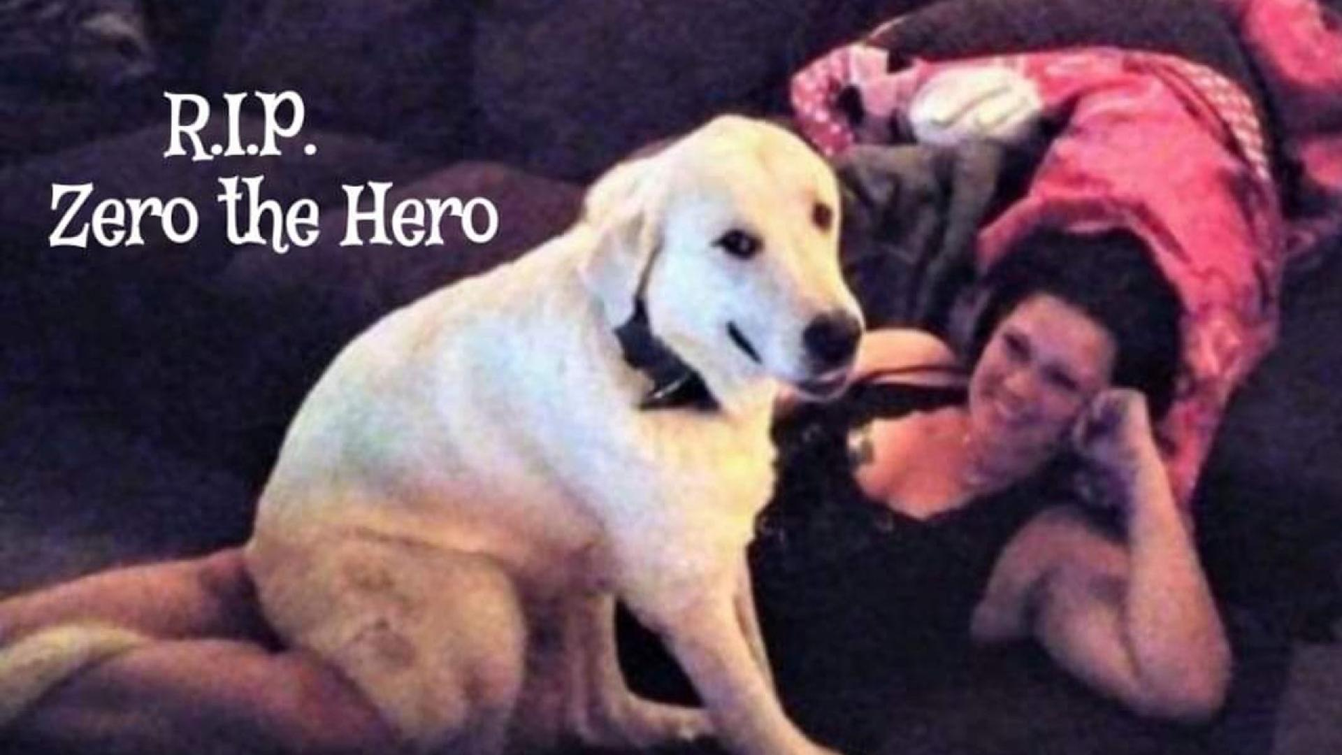 Zero lost his life protecting his family.