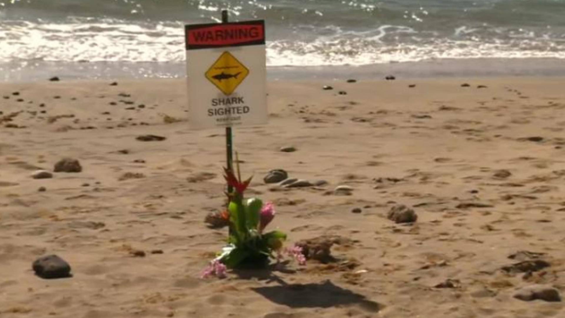 A warning posted on a beach in Maui after a shark attack is seen here.