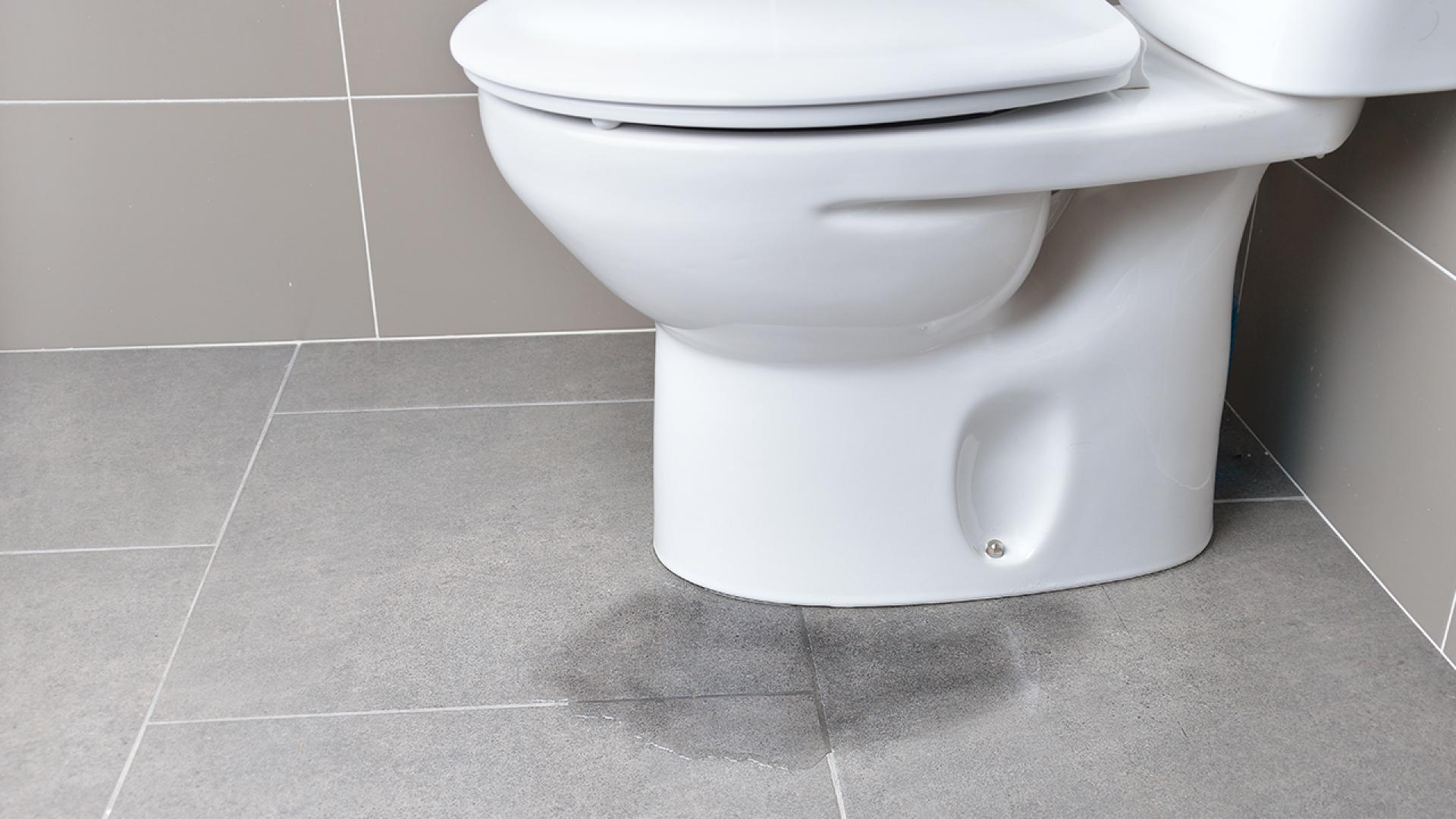 A stock image of a toilet.