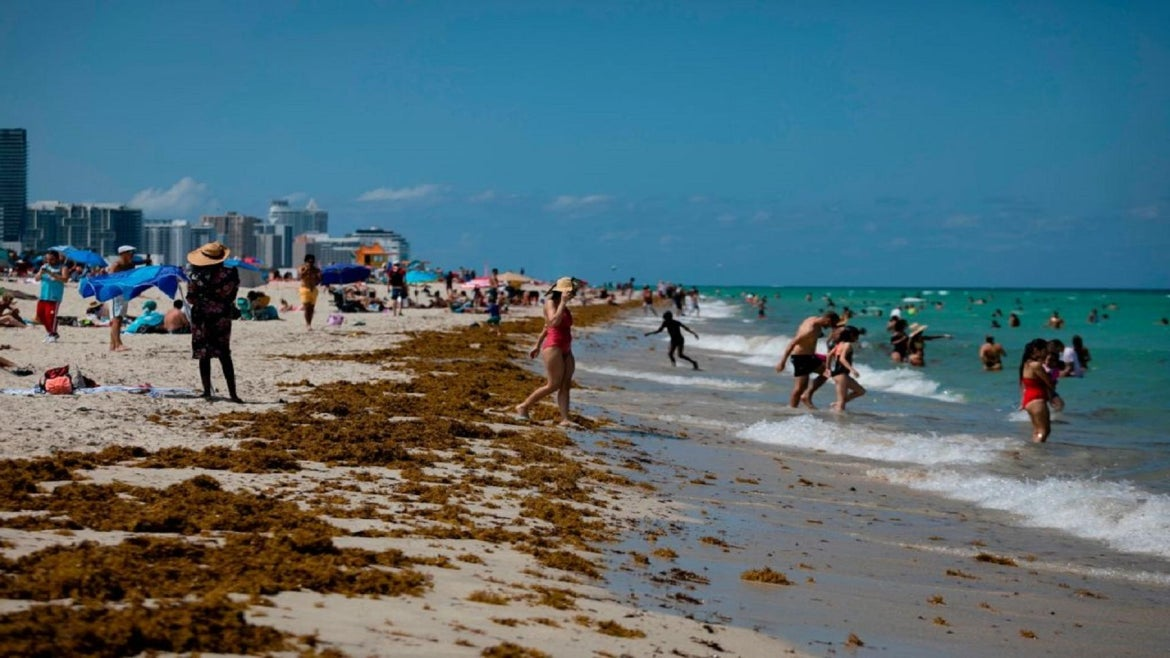 Crowded beaches are not the way to go for Labor Day celebrants, says Dr. Anthony Fauci.