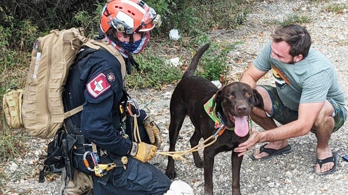 Stout seemed unharmed from the 70 foot fall off a cliff.