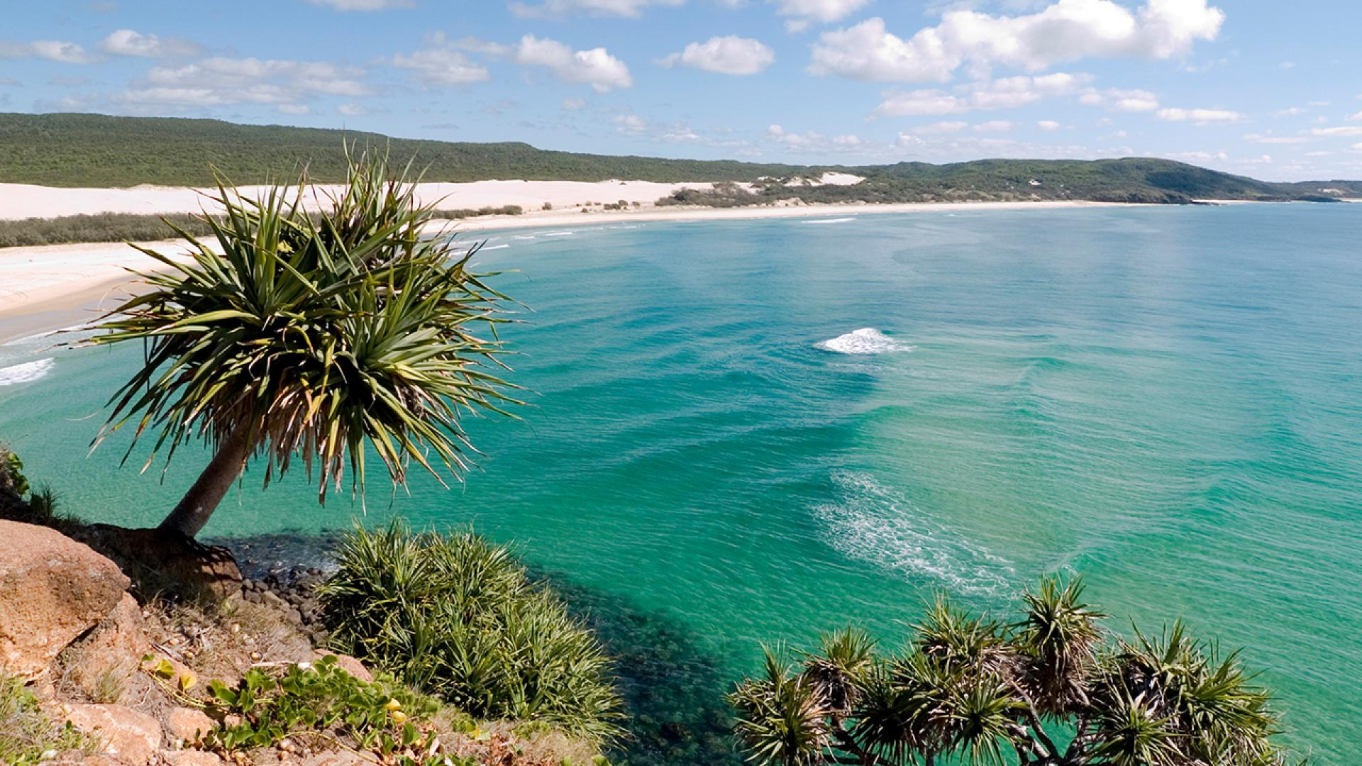 Australia's Fraser Island, a UNESCO World Heritage Site as well as a popular tourist destination, has been ravaged by bushfires for the last several weeks.