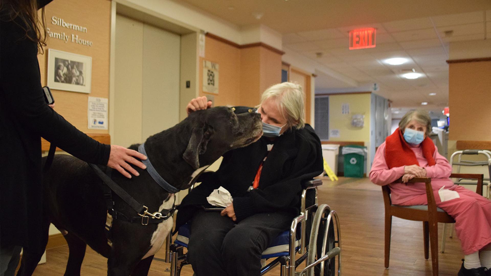 Resident Sheryl Gerdwagen pets Marley, the great dane, as resident Ethel Brown enjoys watching from afar