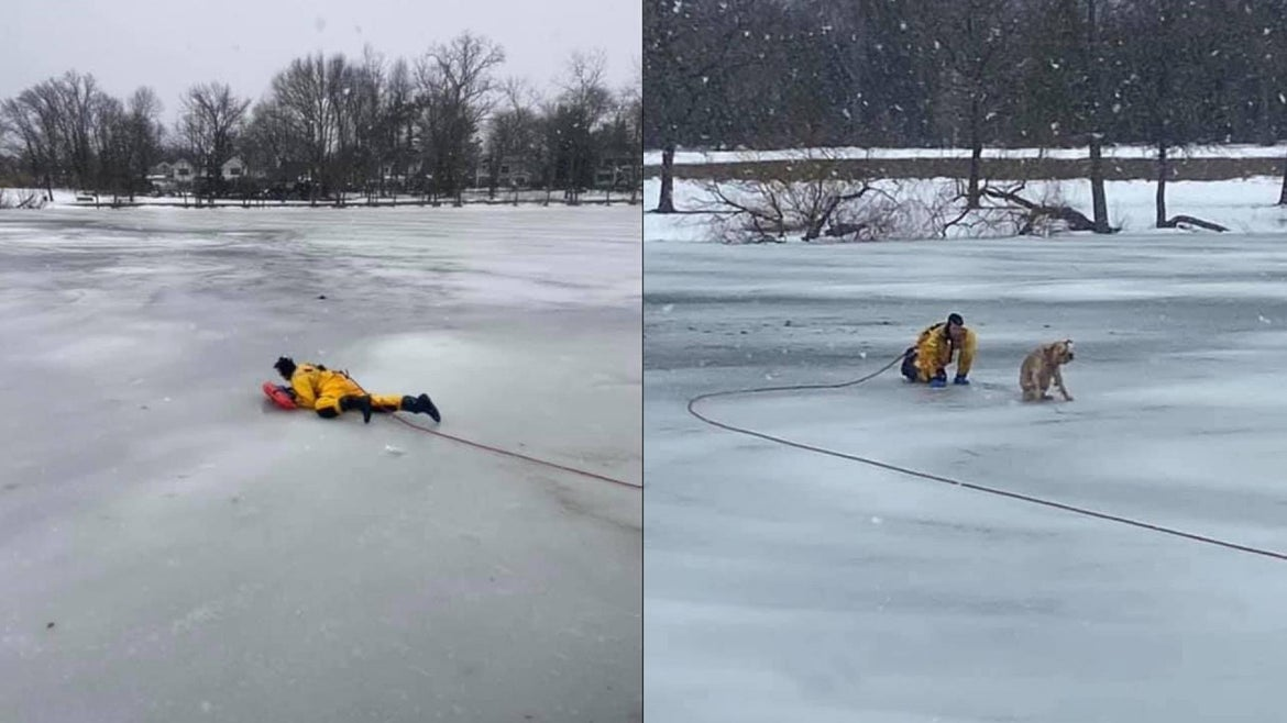 """. The dog named """"Lucky"""" was caught between the ice at Grant Park pond in Hewlett on Sunday, according to the Hewlett Fire Department."""