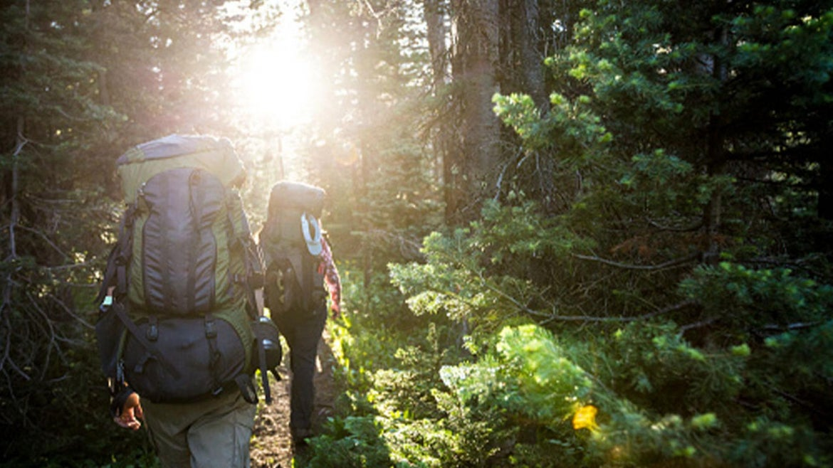 Stock image of hikers walking along a wooded trail.