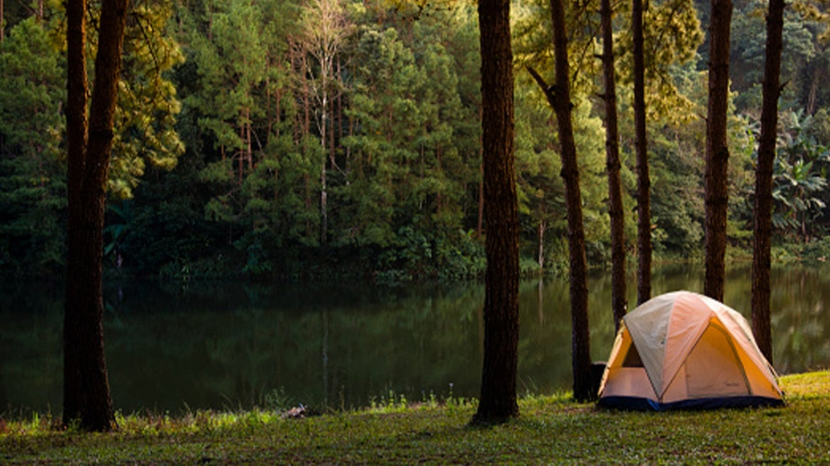 A stock image of campsite surrounded by trees.