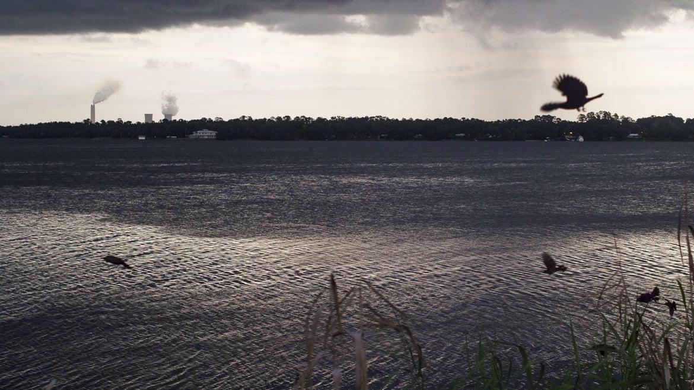 St. Johns River in Jacksonville, Florida