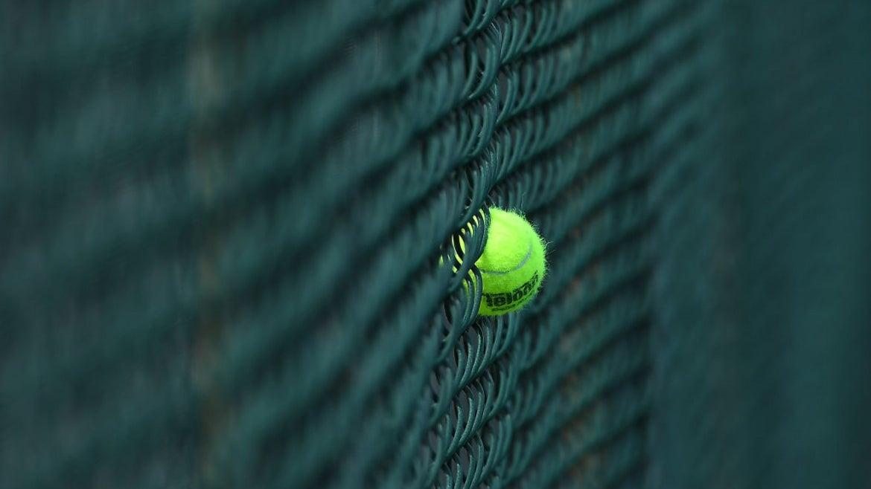 Tennis ball in gate