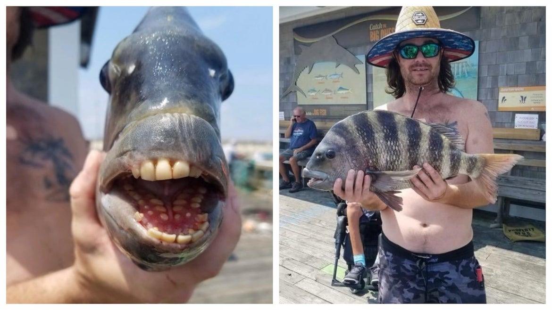 Pez con dientes parecidos a los humanos